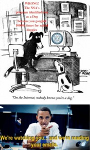 on the internet no one knows you are a dog