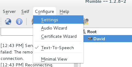 mumble settings